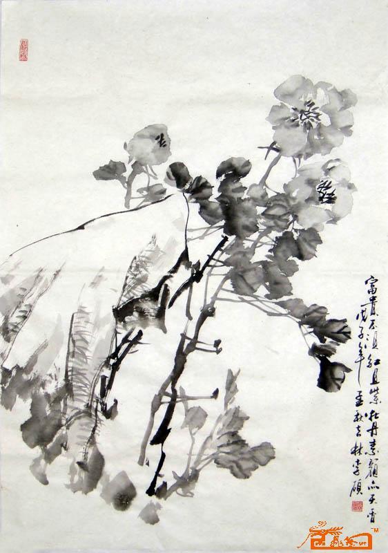 名家 李硕 花鸟 - 水墨牡丹